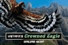 Untamed Crowned Eagle